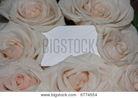 Card In Pink Roses