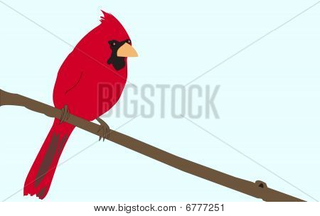 Bright Red Cardinal sitting on a tree branch illustration