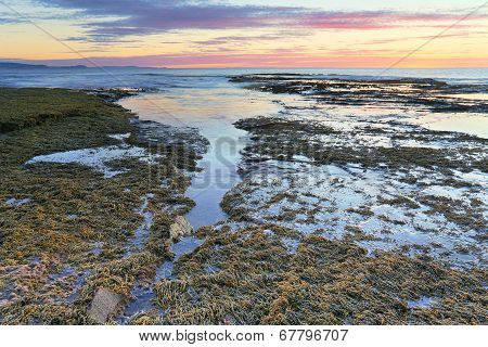 The Overflow, Long Reef, Nsw, Australia