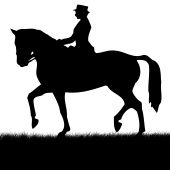 illustration showing horse and rider in silhouette against white poster