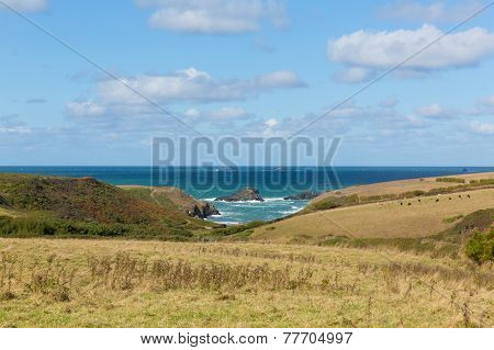 View to Porth Mear near Porthcothan North Cornwall England UK