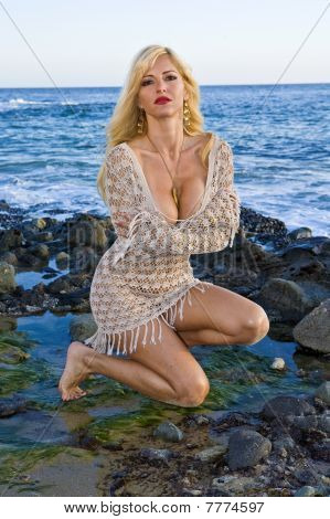 Blonde Woman Wearing A Mesh Dress