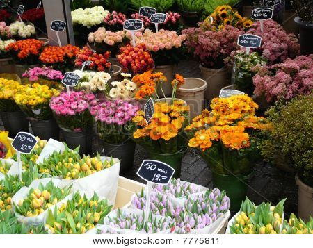 Flower market in Amsterdam