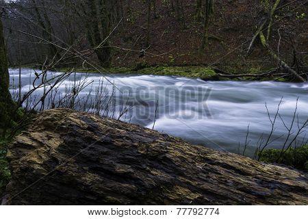 River Dobra at Gorski Kotar
