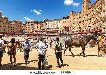 Piazza del Campo in the preparation of sandy substrate for the race