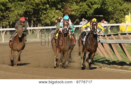 Persistently Wins The Personal Ensign Stakes