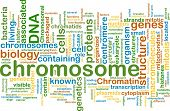Background text pattern concept wordcloud illustration of  chromosome poster