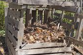 A rickety home made compost bin outside made of recycled wood and filled with different levels of compost in various stages of decomposition poster