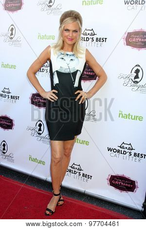 LOS ANGELES - AUG 1:  Elaine Hendrix at the A CATbaret! - A Celebrity Musical Celebration of the Alluring Feline at the Avalon on August 1, 2015 in Los Angeles, CA