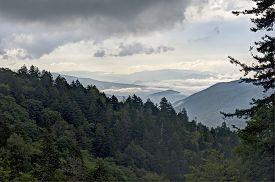 Newfound Gap, Smoky Mountains
