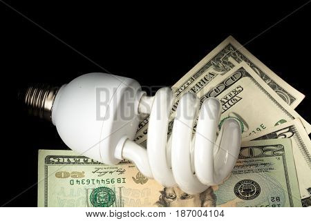 Energy energy efficient bulb fluorescent compact bulb household bulb money