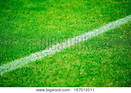Soccer field football pitch grass sport close-up football soccer