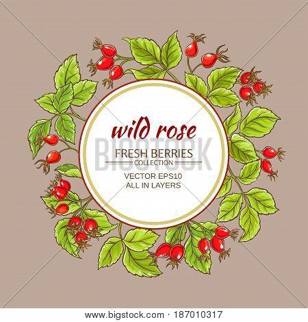 wild rose vector frame on color background