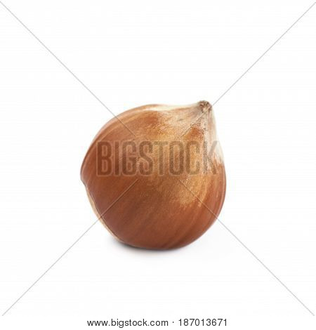 Single hazelnut isolated over the white background