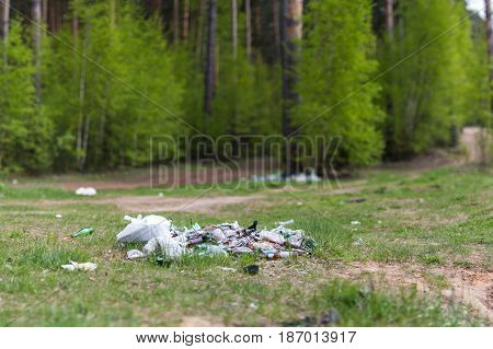 Garbage dump in place of rest nature environment problems