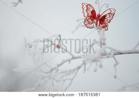 New year christmas concept. Red butterfly on winter tree.