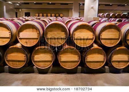 Wine barrels in winery cellar