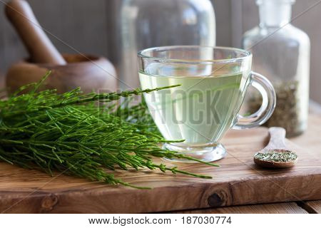 Horsetail Tea With Fresh And Dried Horsetail