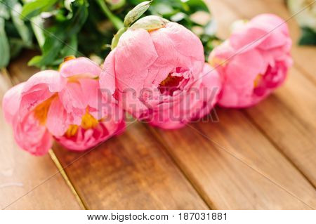 landscape design, gardening, love, wedding, romance, nature, celebration concept - close-up of blooming buds of beautiful pastel pink peonies lying on wooden garden table