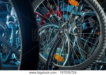 Master Bike Repairs In The Workshop 2
