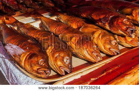 Smoked breams at the fish market on Volga river