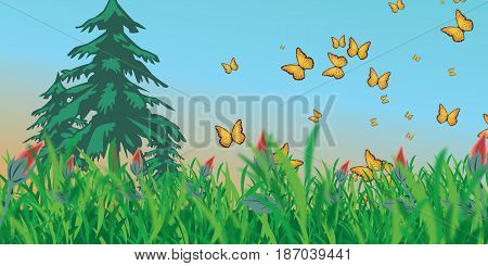 meadow with butterflies on a background of the sky with three yalynkaty and green grass