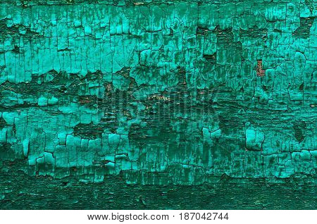 Green painted old boards of wood grange background texture
