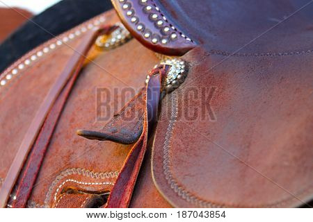 leather saddle with silver dots on a brown horse