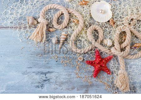 sea shells in a fishnet, on wooden board, summer vacation background