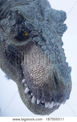 Macro Head Shot Of Green Dinosaur Tyrannosaurus Rex With Close Mouth Staring The Prey  - White Backg