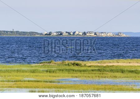 Marsh along Acushnet River outer harbor emptying into Buzzards Bay