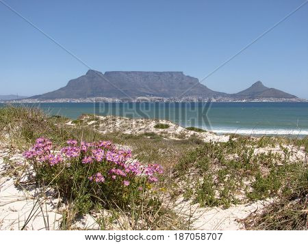BLOUBERG STRAND, CAPE TOWN, SOUTH AFRICA 14xcf