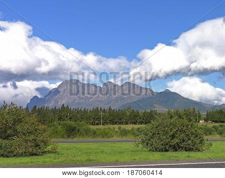 CAPE TOWN, SOUTH AFRICA, LANDSCAPE, TREES AND VEGETATION IN THE FORE GROUND, WITH MOUNTAINS AND CLOUDS IN THE BACK GROUND