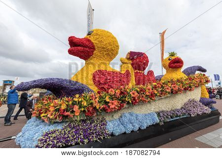 NOORDWIJK NETHERLANDS - 22 APRIL 2017: Platform with tulips and hyacinths during the traditional flowers parade Bloemencorso from Noordwijk to Haarlem in the Netherlands.