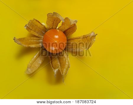 decoration with physalis and a yellow glaze and on the top for a cake selective focus