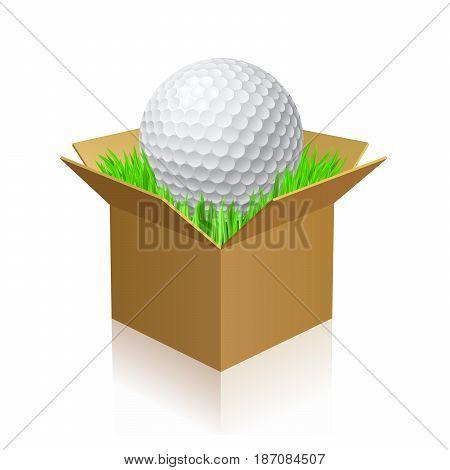 Golf Ball on Green Grass in a Carton Box