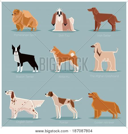 Vector image of the set of dogs flat icons