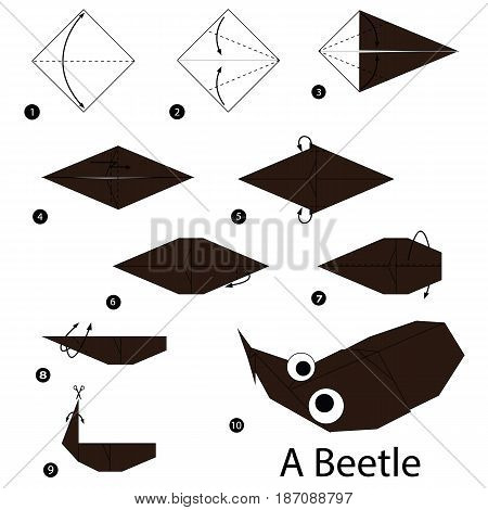 step by step instructions how to make origami A Beetle.