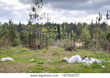 Garbage dump in place of rest. Environmental problem