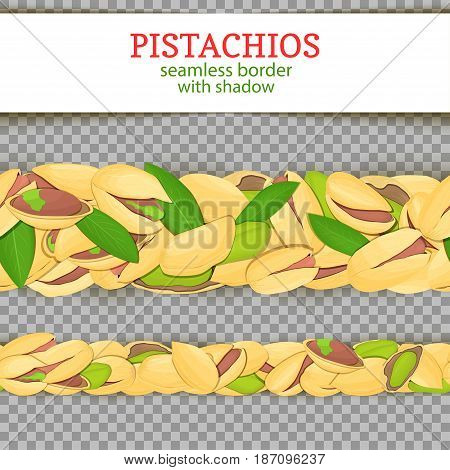 Pistachio nut Horizontal seamless border. Vector illustration card. Wide and narrow endless strip with Pistachios fruit in the shell whole shelled leaves with shadow transporent. Infinite nut border