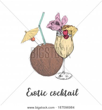 Exotic cocktail coconut pineapple drink. Sketch cocktail vector