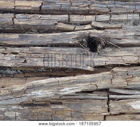 Old cracked gray wood texture with big dark hole. Natural retro background. Wooden surface with horizontal structure.