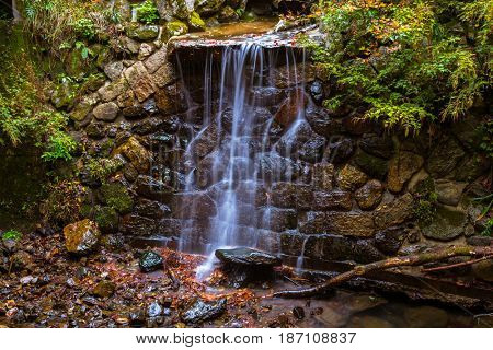Crystal clear water of mountain creek in the forest of Japan