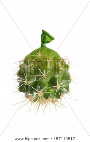 Abstract cactus small balloons on white background