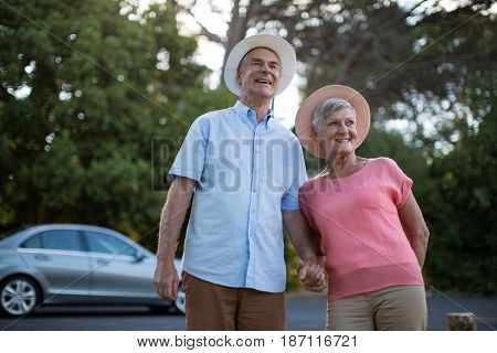 Cheerful senior couple standing at roadside