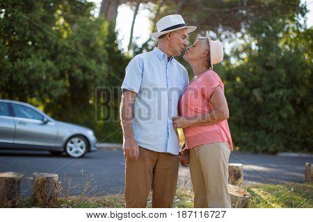 Loving senior couple romancing at roadside