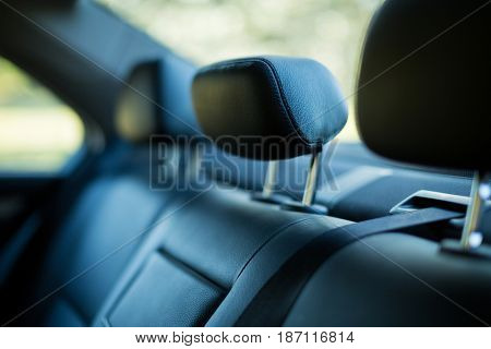 Close up leather back seats in car