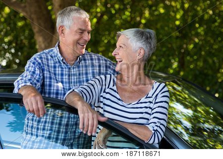 Cheerful senior couple leaning on car door