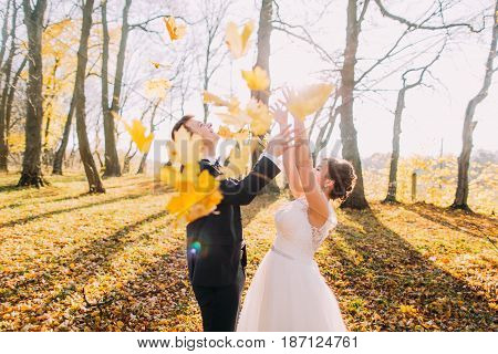 The autumn composition of the happy newlyweds throwing up the yellowed leaves in the park