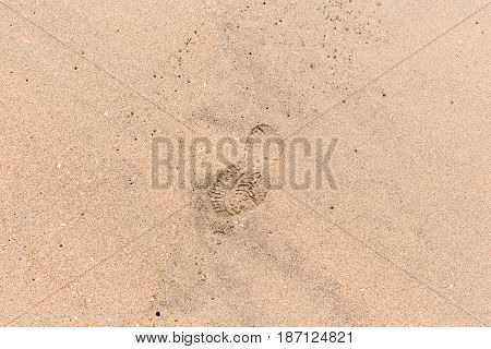 Footprints Shoe Shoreline Sandy Beach.
